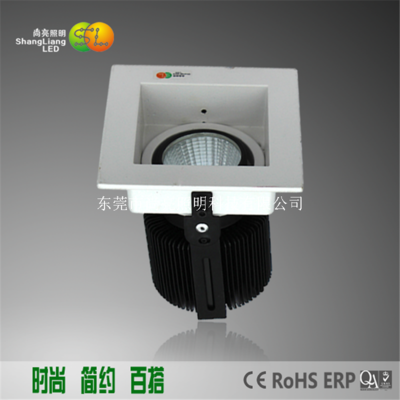 9W LED筒灯SL-02009005