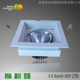 12W LED豆胆灯SL-04012001